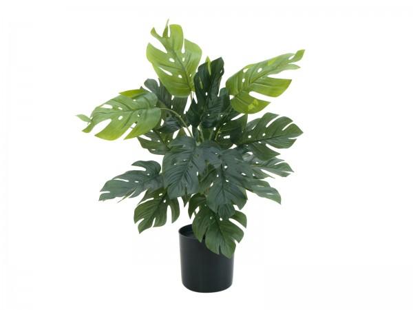 EUROPALMS Splitphilodendron, Kunstpflanze, 38cm // EUROPALMS Split philo plant, artificial, 38cm1